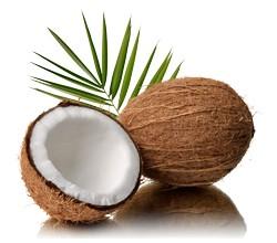 Kokosöl BIO desodoriert